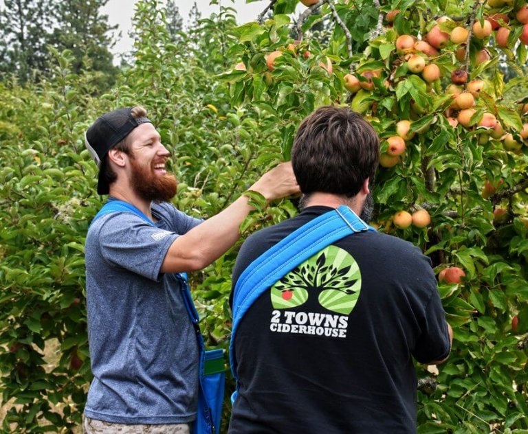 2 Towns Cider crew picking apples