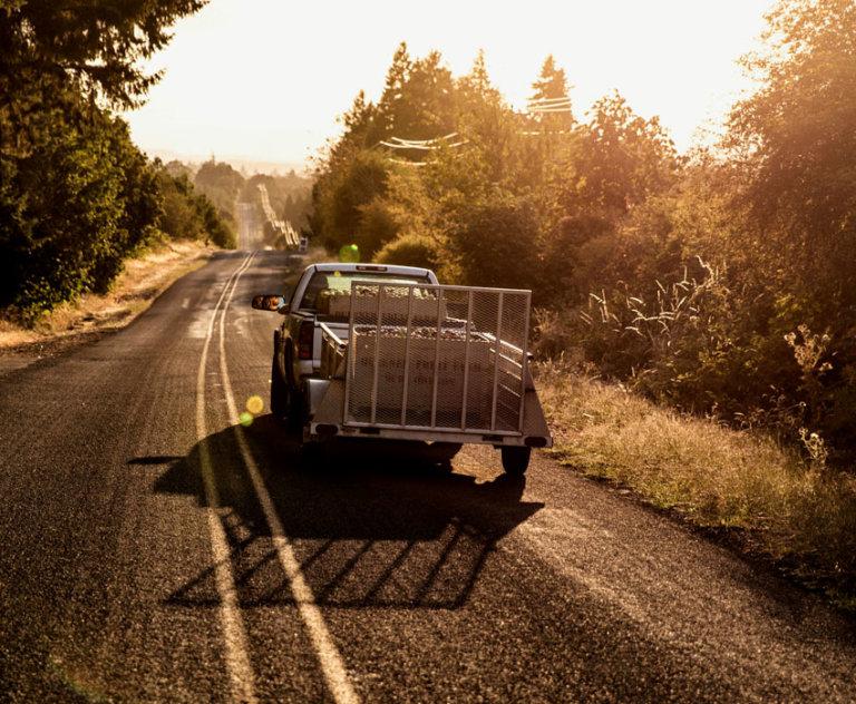 TruckinApples