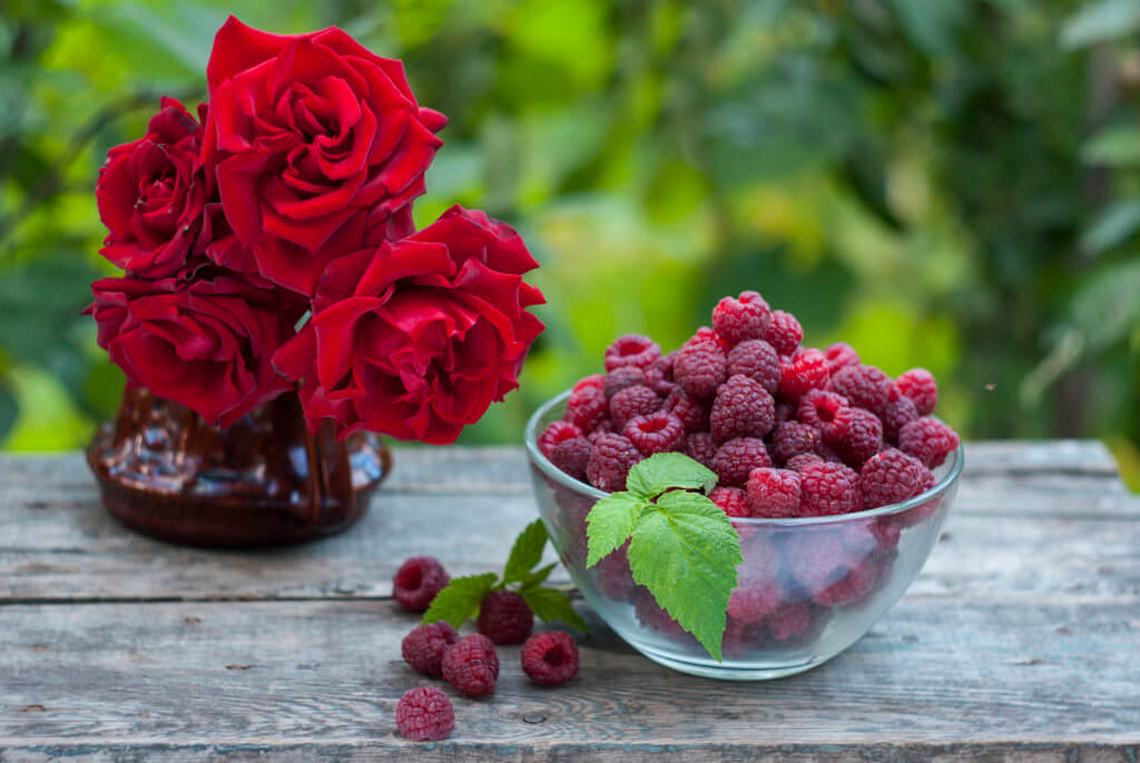 fresh delicious raspberry and red roses bouquet on wooden table in garden