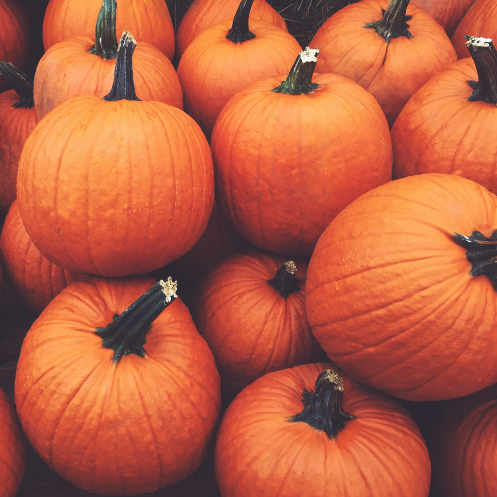 2021---Hollow-Jack'D-Pumpkins